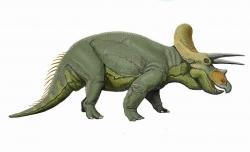 Triceratops Dinosaur Clip Art
