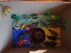 dinosaur habitat