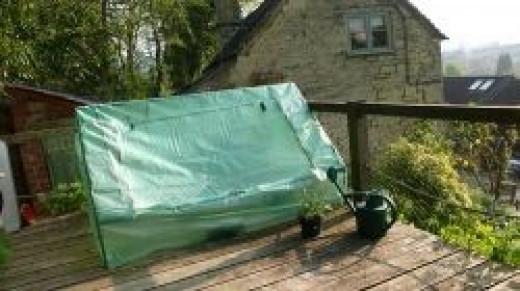 Recycled Garden Cloche