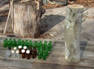 The Making of a Bottle Tree Stump