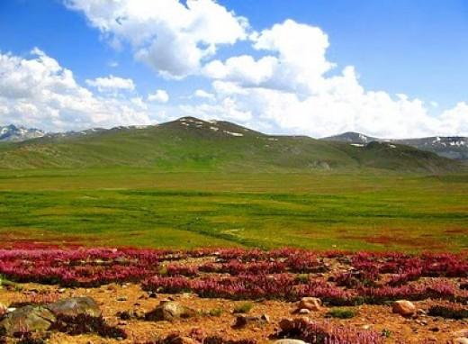 Deosai Plateau