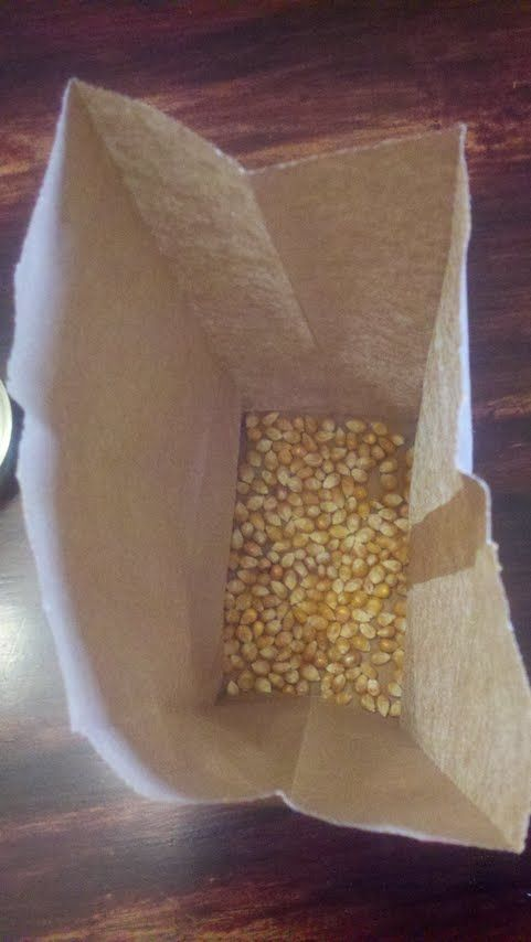 Place enough kernels to cover the bottom of the paper lunch bag.