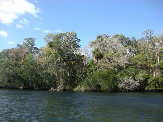 Chassahowitzka, Florida