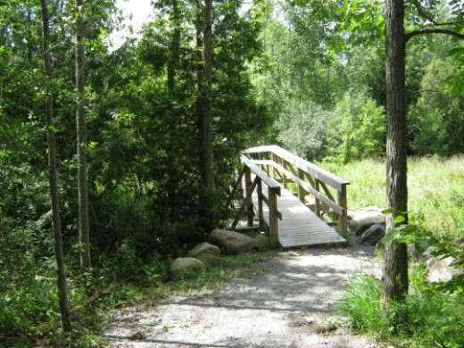 Well made bridge to cross stream.