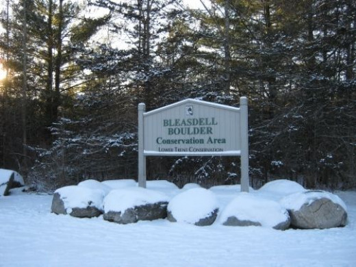 The Bleasdell sign in the parking lot.
