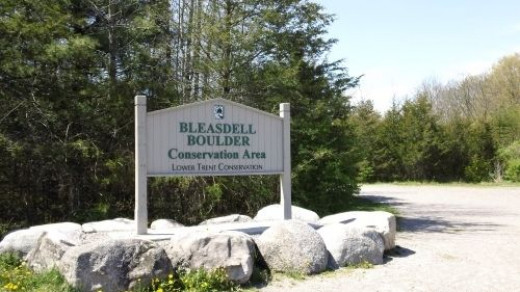 The parking lot and Bleasdell sign.