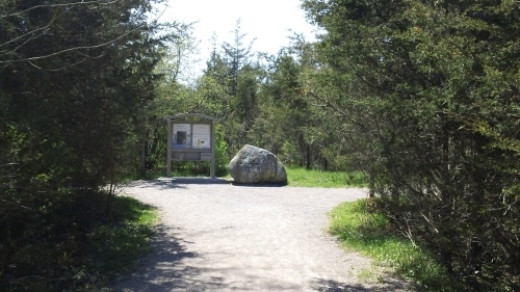 The start of the trail to the Bleasdell Boulder.