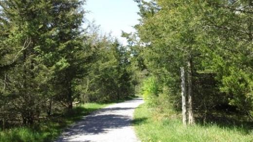 Beginning of circular trail to boulder.