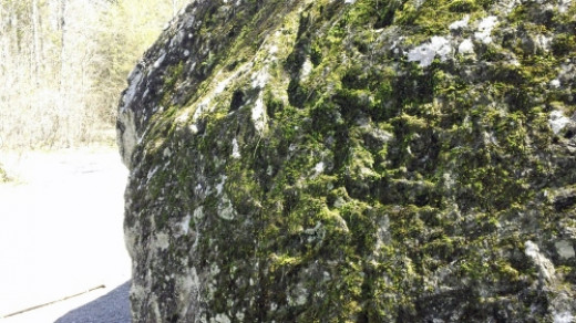 Moss on lower right side of boulder.