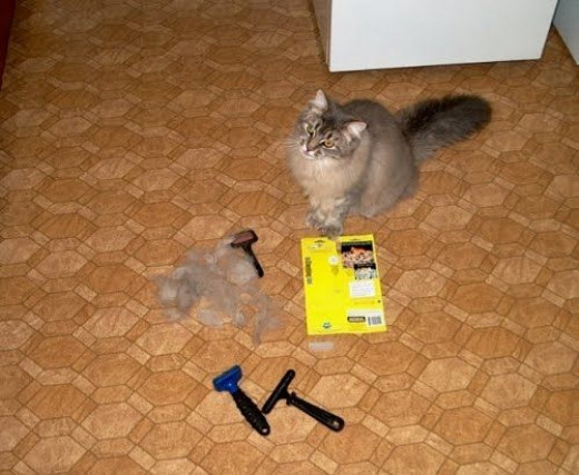 I found the FURminator easy enough to hold in my hand but awkward to use on a squirming cat. I had to keep moving around the kitchen to brush him. Fur was flying up my arms (I found this to be both gross and irritating) and into my face. The official