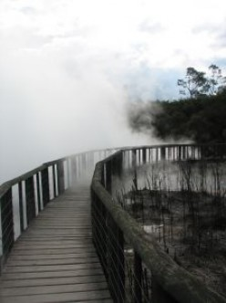 Rotorua Thermal Area.  Photo credit: http://www.sxc.hu/profile/Bwe