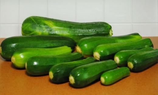 Bountiful zucchini gives so many gifts