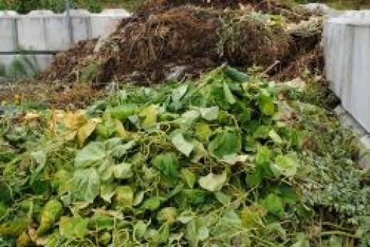 Gigantic Compost Bin
