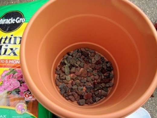 Place a layer of rocks on the bottom of the pot.