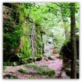 Let's Go Hiking at Nelson-Kennedy Ledges State Park