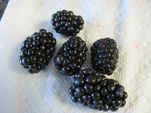 Wash and Dry Blackberries