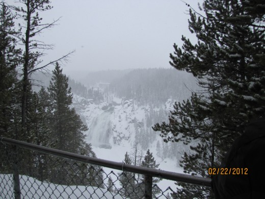 Yellowstone in Winter!