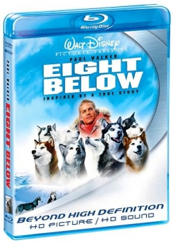 Best Dog Movies on Blu-ray