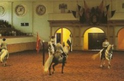 Weekly display at the Royal Andalusian School of Equestrian Art, Jerez de la Frontera