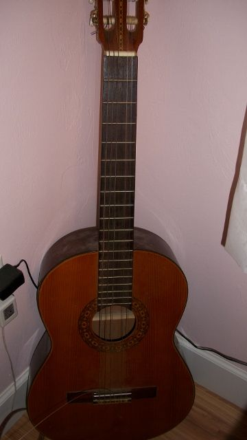 My1993 Ensenada Classical has a fantastic sound and not very expensive another good beginner guitar. Photo taken by me.