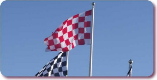 Chequered Flag by Elliott Brown