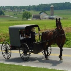 Amish Wagon Outdoor Decorations