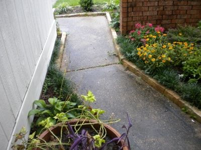 An Inviting walkway