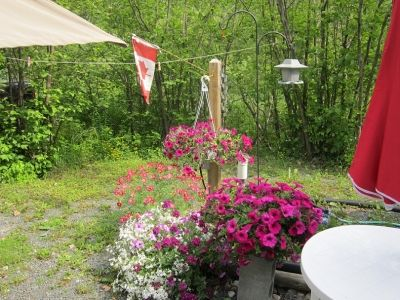 Flowers Gardens are a Canadian Tradition