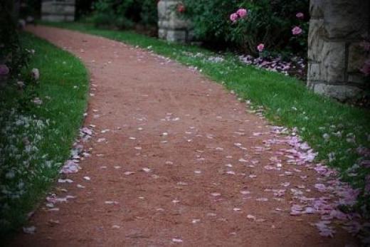 Pink Rose Pedal Path