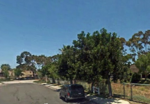 The nondescript trees on the right shading the van are where my tanagers would make their annual May visits.