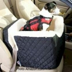 Dog Seat Belt-Pet Safety While Riding In The Car