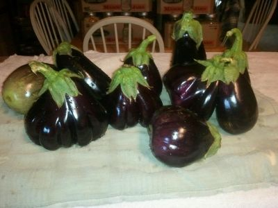 Eggplants can also be frozen