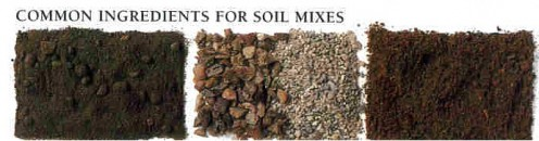 1:sterilized soil   2:grit(improves drainage)   3:peat(light but no nutrients)