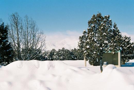 Snow drifts in the backyard