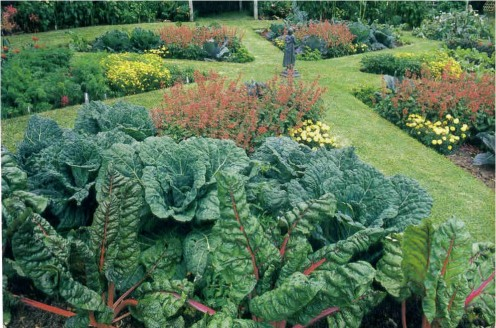 This garden features a series of beds in a pie shape. All have slightly different mixes of edibles and ornamentals.