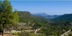 Jalon Valley Alicante Costa Blanca Spain
