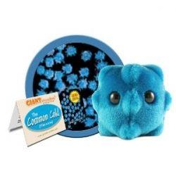 Plush Common Cold