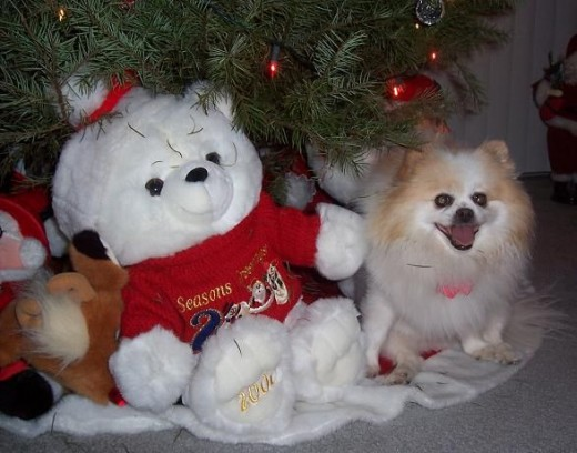 Bella At Christmas (She's The One On The Right!)