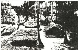 Fig.2 A Village House in Jaffna, Sri Lanka. Note, separate thatched units arranged around an open court.