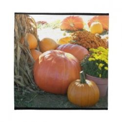 Fall Scene Placemat and Matching Napkins