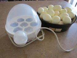 Peeling Hard Boiled Eggs