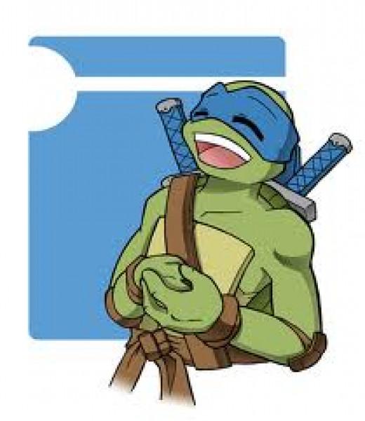 Female ninja turtle