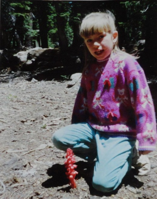 Snapshot of my niece posing beside Snow flowers, taken in 1993 when we took Dad's ashes back to the mountains.