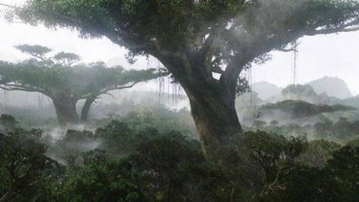 Avatar's Rainforest
