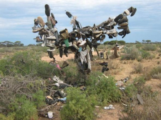 The bush is in the middle of nothing along the Nullarbor Plain, and gradually, people passing by thought it would be fun to leave something.  It probably started as trash, but once it caught on, has become a fun thing to do... in an otherwise long an