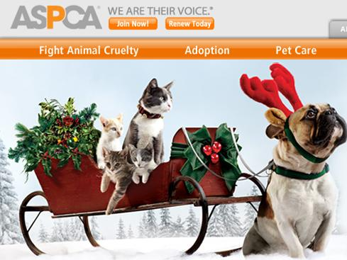ASPCA Honor Gift