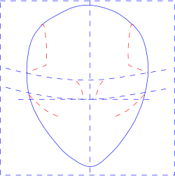 Set Guidelines for Facial Features