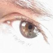 N376 profile image