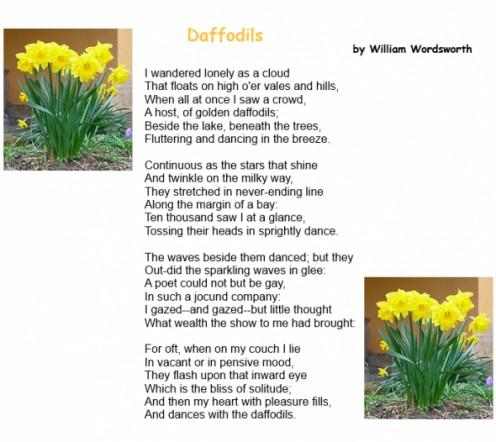 william wordsworth-daffodils essay Wordsworth daffodils essays - an analysis of william wordsworth's daffodils.
