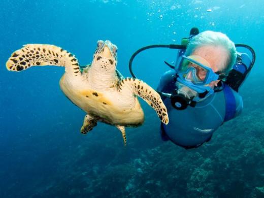Jean-Michel and his Hawksbill Turtle friend